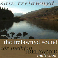 Sain Trelawnyd CD Cover